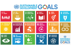 "At the top it says ""Sustainable Development Goals"". The logo for the United Nations is at the left, the ""O"" in ""Goals"" shows the 17-color wheel representing the Sustainable Development Goals. Below the header are boxes, each box listing one of the 17 goals with an icon representing the concept."